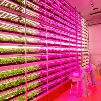 Vertical Farming Enclosures